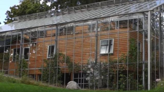 Üvegházat húztak fel a házuk köré